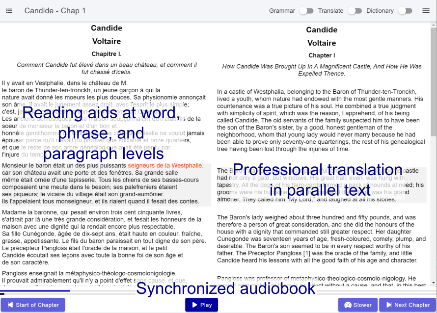 Reading Immersion using Listening Reading (LR) Method